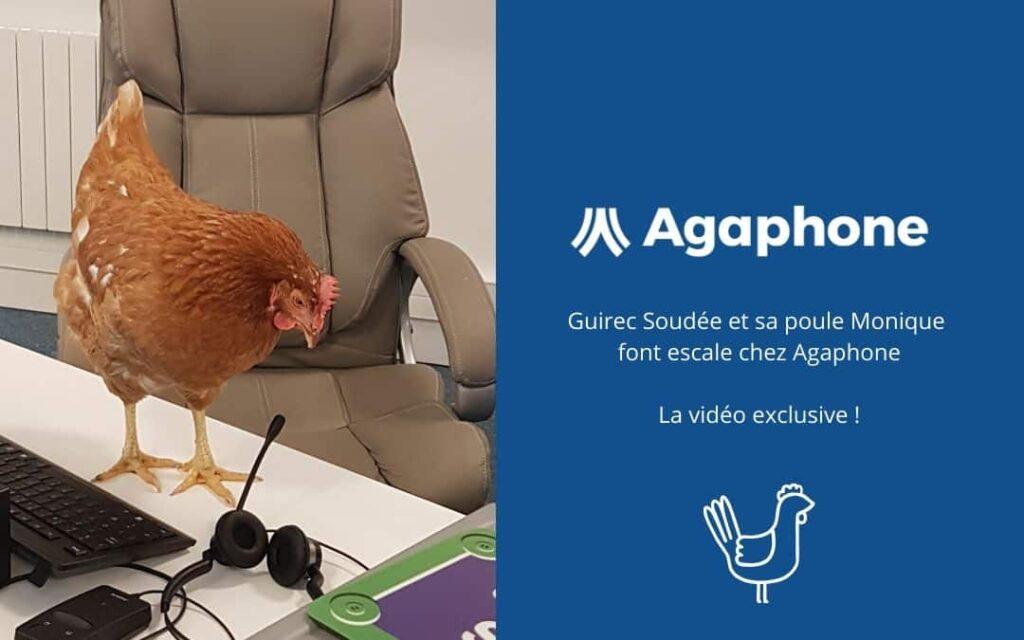 Monique la Poule de Guirec Soudée prise lors de la visite chez Agaphone
